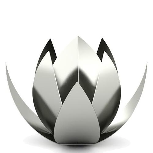 (Stainless) steel keepsake urns